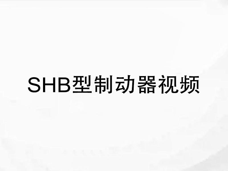 SHB型制动器视频
