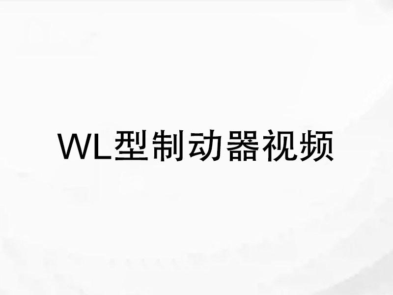 WL型制动器视频